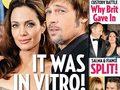 I gemelli Pitt-Jolie nati da una fecondazione in vitro