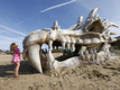 Trovato enorme teschio di drago sulle spiagge del Dorset!