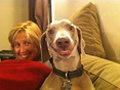 Cani felici: come imparare (anche da loro) a sorridere