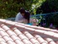 Ashton Kutcher e Mila Kunis stanno insieme