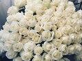 Barbara D'Urso: ammiratore segreto le invia 100 rose