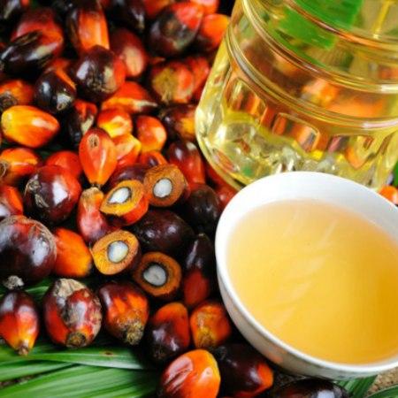 Attenzione all'olio di palma: cosa ha detto l'Efsa e cosa rischiano i bambini