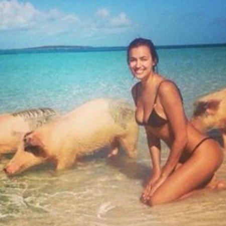 Irina Shayk sguazza tra i maiali alle Bahamas